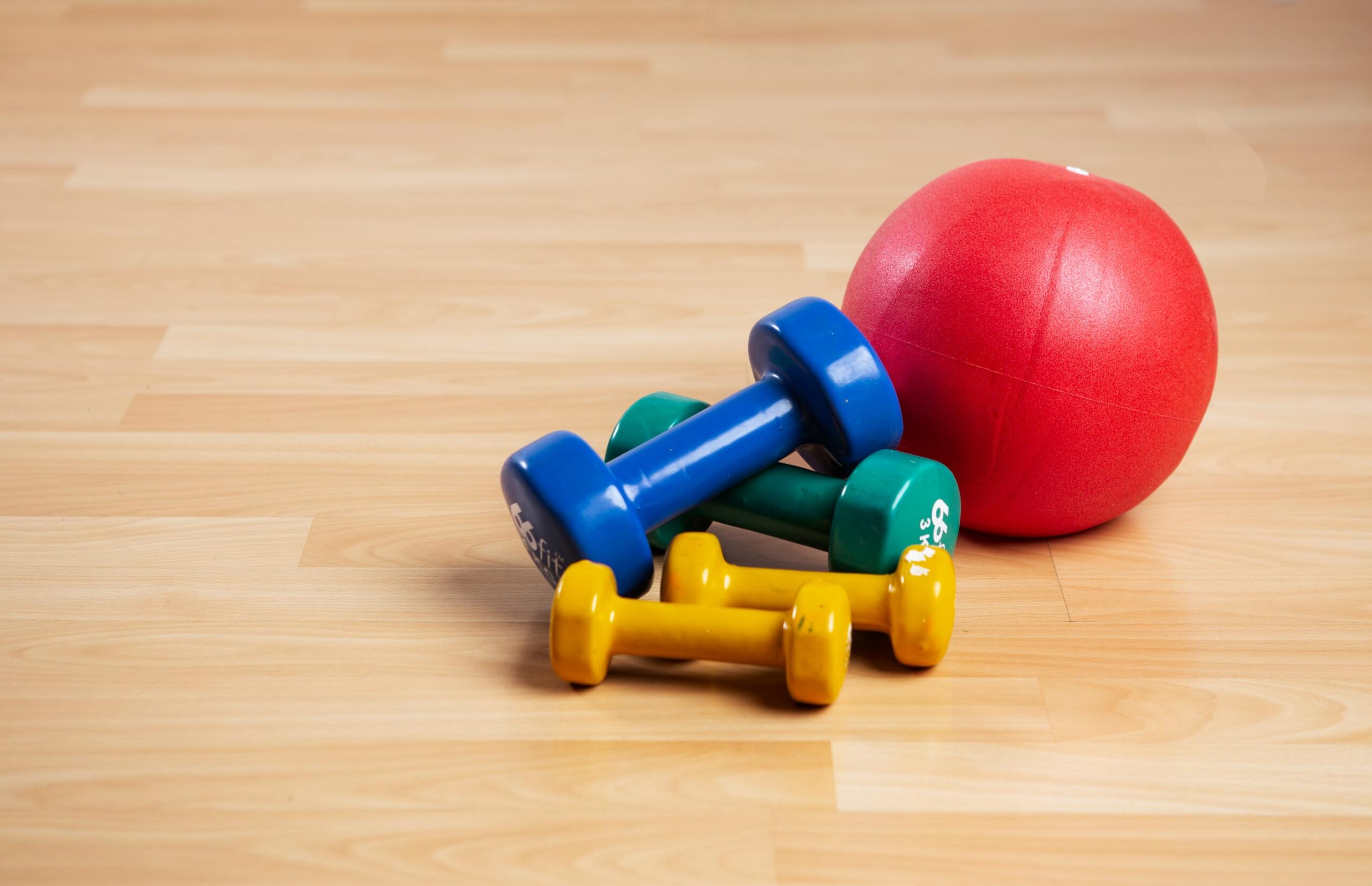 Dumbbells and Ball Photo